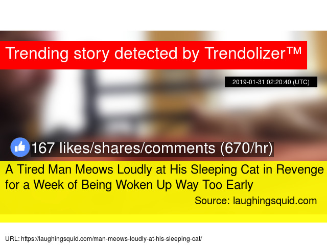 A Tired Man Meows Loudly at His Sleeping Cat in Revenge for